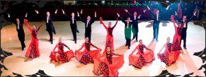 Танцови ансамбли, Балети и други